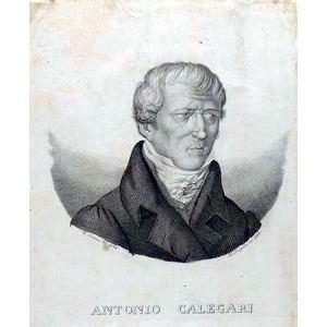 Luigi Antonio Calegari Opinions on Luigi Antonio Calegari