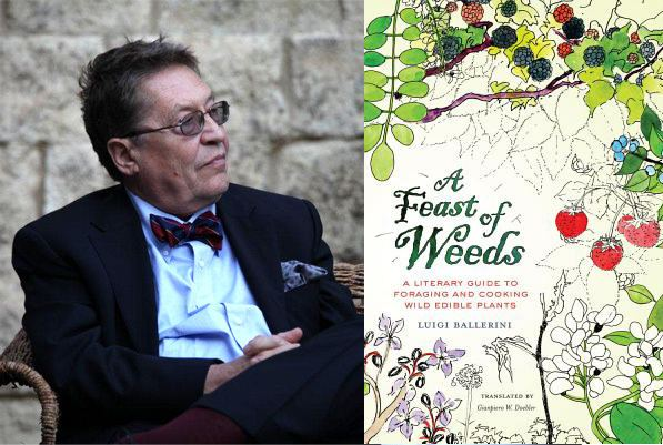 Luigi Ballerini Book Review A Feast of Weeds by Luigi Ballerini Root Simple