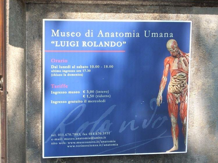 Luigi Rolando The Museum of Human Anatomy Luigi Rolando Himetop