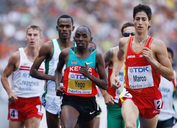 Luis Alberto Marco Luis Alberto Marco Photos 12th IAAF World Athletics