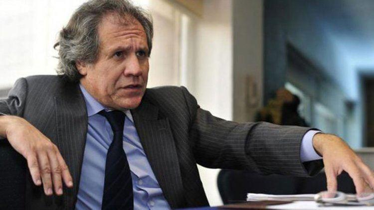 Luis Almagro Luis Almagro un negociador pragmtico para la OEA OEA