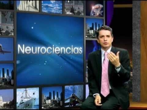 Luis Gaviria NeuroCoaching Mision Cursos Coaching Luis Gaviria YouTube