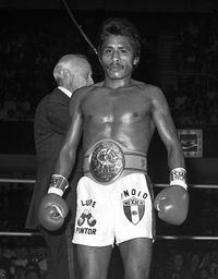 Lupe Pintor BoxRec Lupe Pintor