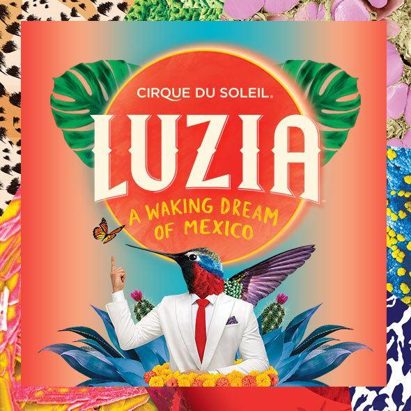 Luzia (Cirque du Soleil) httpss2cirquedusoleilcommediaimagesshows