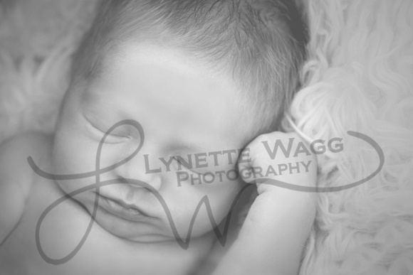 Lynette Wagg Lynette Wagg Photography Boyd Oetken