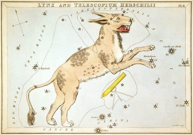 Lynx (mythology) Lynx (mythology)