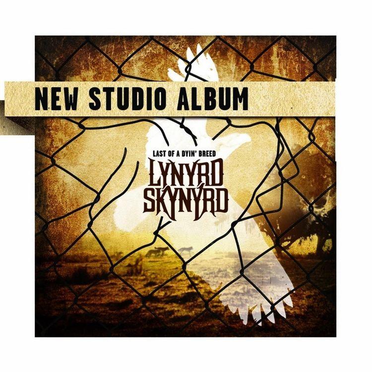 Lynyrd Skynyrd httpslh4googleusercontentcomVcb4XTUc9QMAAA