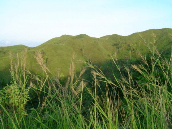 Maasin in the past, History of Maasin