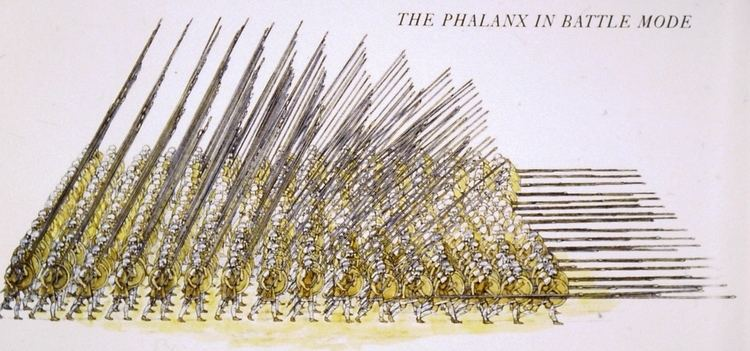 Macedonian phalanx Alan Fildes Gallery Alexander the Great Alexander the Great