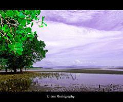 Maguindanao Beautiful Landscapes of Maguindanao
