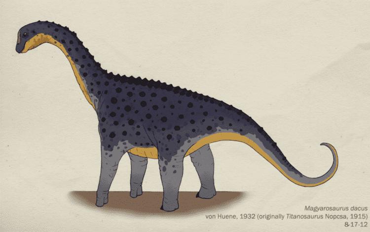 Magyarosaurus magyarosaurus DeviantArt