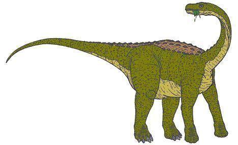 Magyarosaurus Magyarosaurus Dinosaur Facts information about the dinosaur