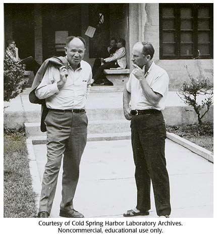 Mahlon Hoagland Gallery 21 Mahlon Hoagland and Ernest Borek 1966 DNA