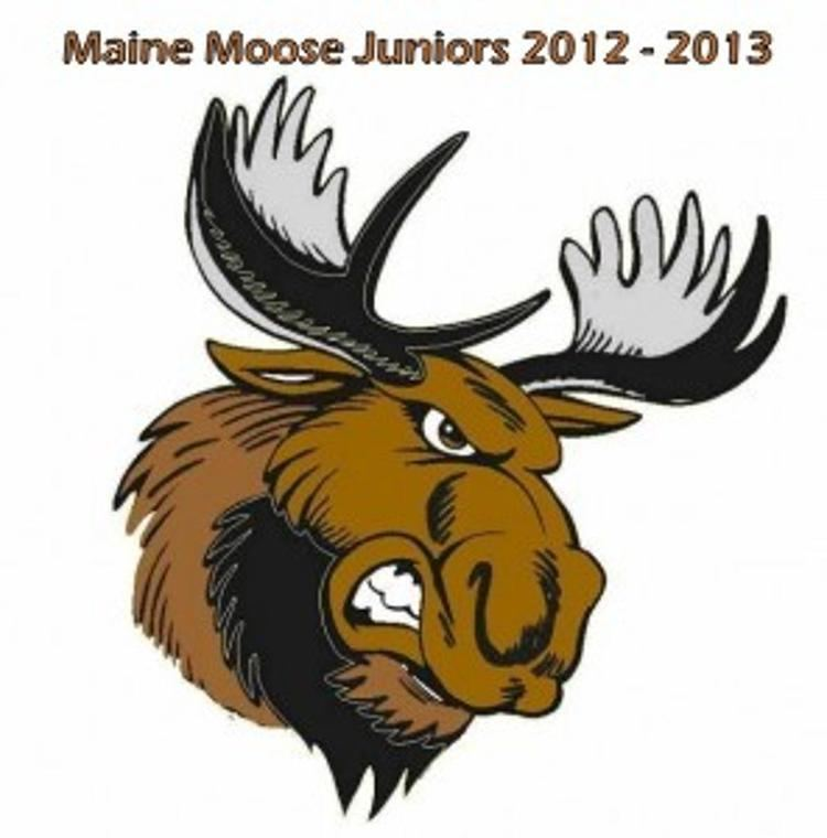 Maine Moose cdn4sportngincomattachmentsphoto19814112Mai