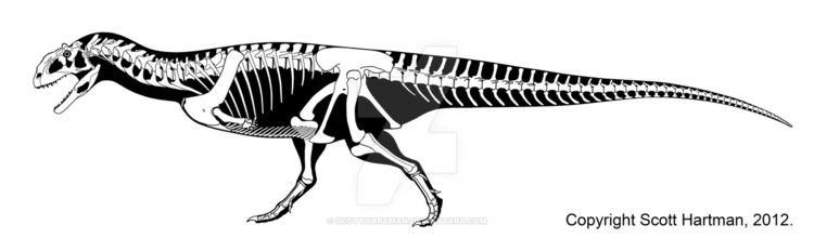 Majungasaurus Majungasaurus crenatissimus