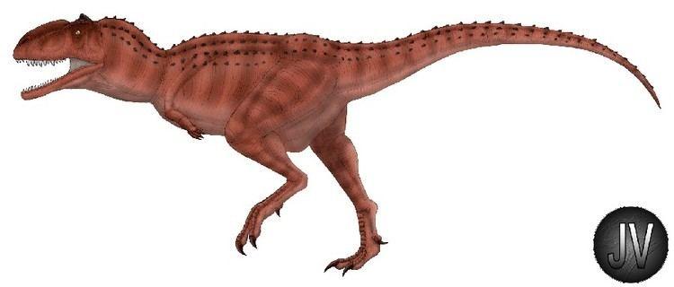 Majungasaurus Majungasaurus Pictures amp Facts The Dinosaur Database