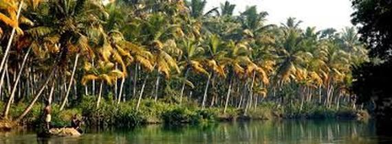 Malabar Coast Malabar Coast PHYSICAL FEATURES OF INDIA