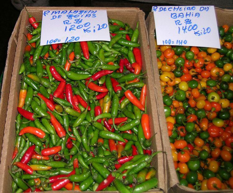 Malagueta pepper Malagueta pepper WorldCrops