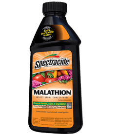 Malathion Spectracide Malathion Insect Spray Concentrate Spectracide