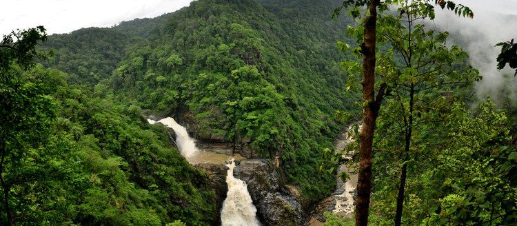 Malenadu Journey of life Monsooned Valleys of Malenadu