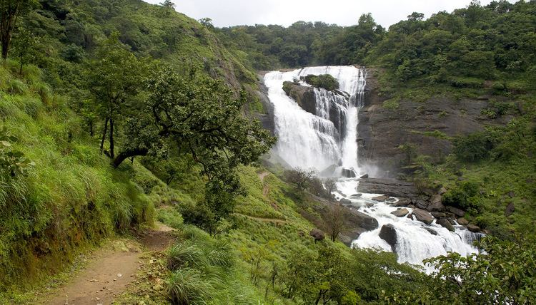 Mallalli Falls Mallalli Falls Coorg Our Chartered falls Some Stories