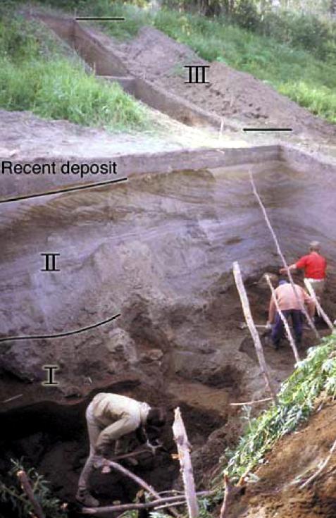 Mamontovaya Kurya donsmapscomimages8kuryaexcavationjpg