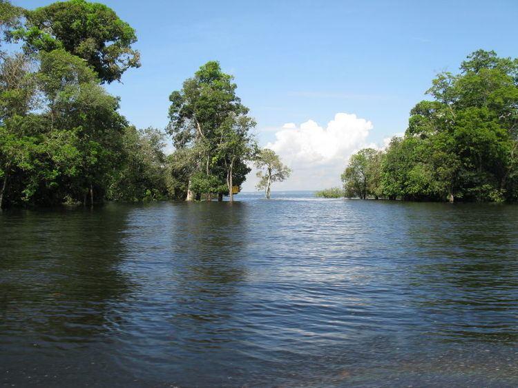 Manaus Beautiful Landscapes of Manaus