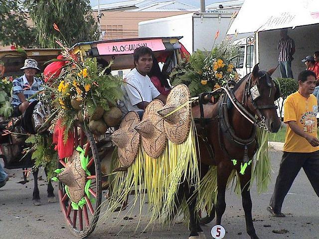 Mandaue Festival of Mandaue