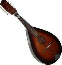 Mandolin mandolin Wiktionary