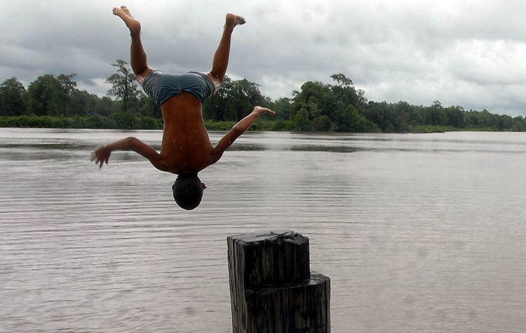 Maracanã River (Pará)