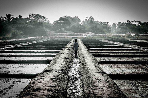 Marakkanam Beautiful Landscapes of Marakkanam