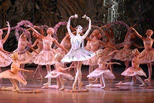 Mariinsky Ballet The Mariinsky Ballet The Ballet Bag