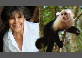 Marina Chapman Was Marina Chapman really brought up by monkeys Debateorg