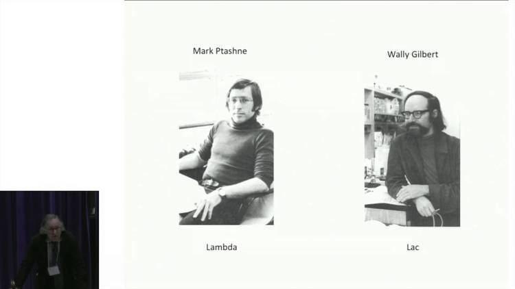 Mark Ptashne Mark Ptashne 61 Genetic Switches YouTube