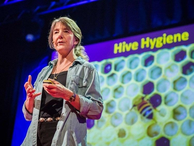 Marla Spivak Marla Spivak Why bees are disappearing TED Talk TEDcom