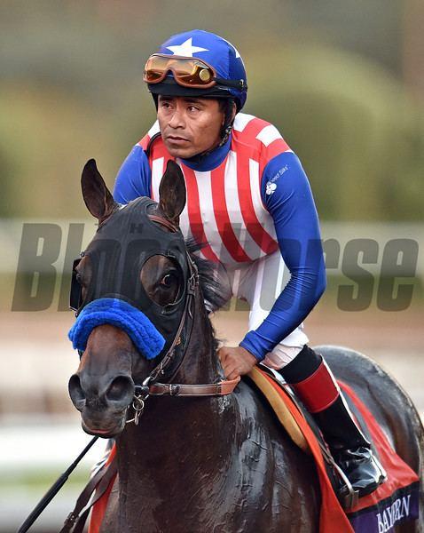 Martin Garcia (jockey) bloodhorse Photo Keywords Bayern bayern