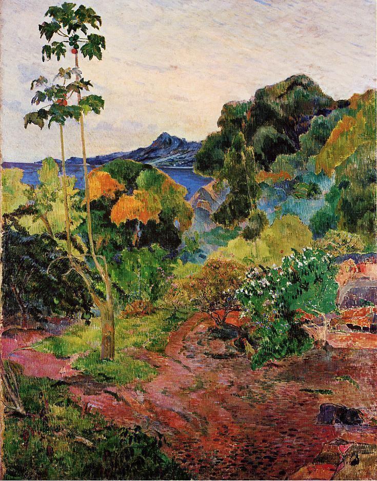 Martinique Beautiful Landscapes of Martinique