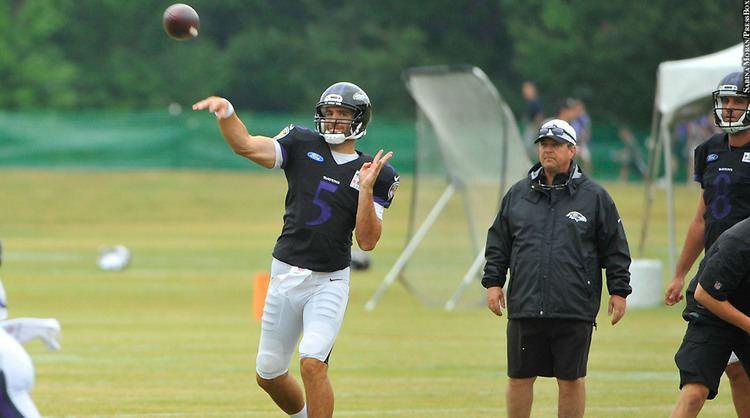 Marty Mornhinweg Marty Mornhinweg Hopes To Build On Coaching Resume With Ravens