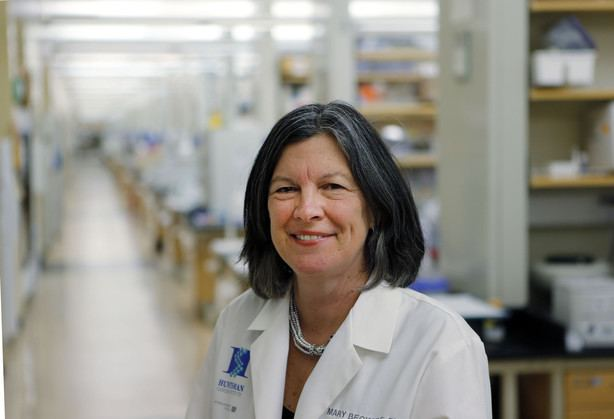 Mary Beckerle University of Utah reinstates fired Huntsman Cancer Institute CEO