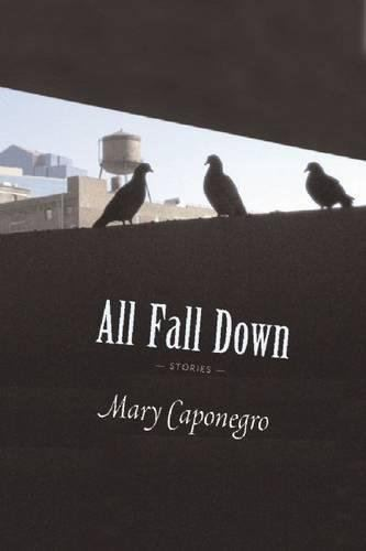 Mary Caponegro All Fall Down Amazoncouk Mary Caponegro 9781566892261 Books