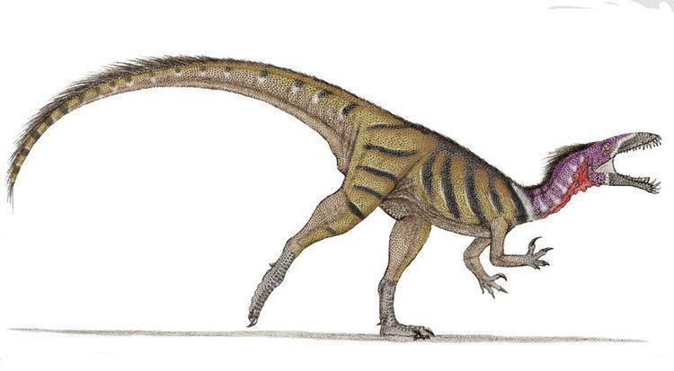 Masiakasaurus masiakasaurus DeviantArt