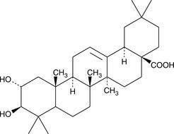 Maslinic acid Maslinic Acid CAS 4373415 Cayman Chemical