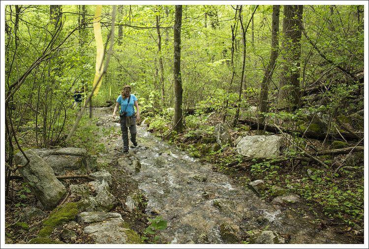 Massanutten Trail Strickler Knob via Massanutten Trailhead Virginia Trail Guide