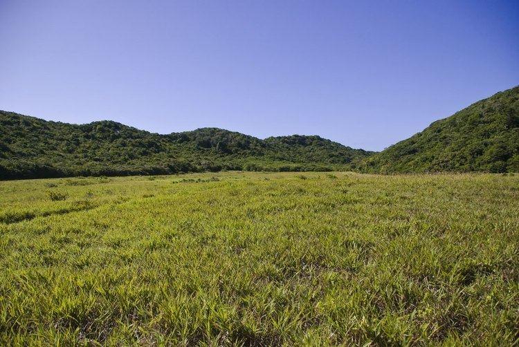Mata da Estrela Private Natural Heritage Reserve