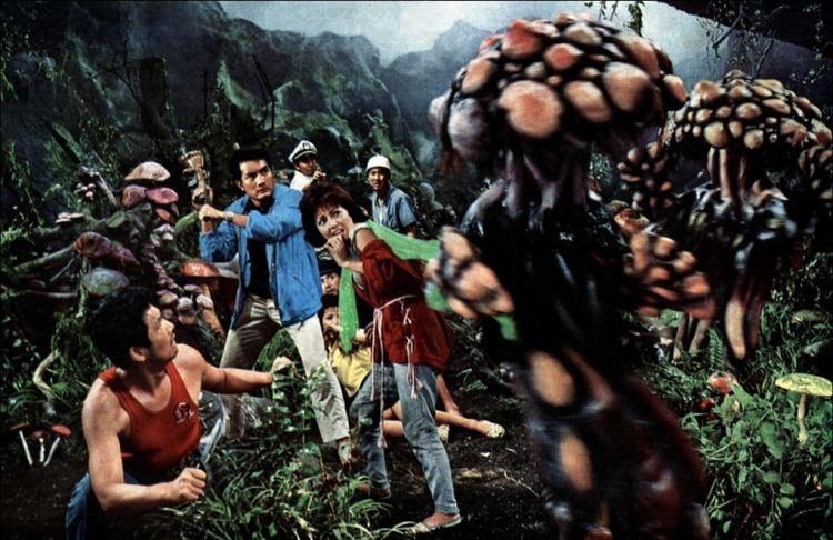 Matango Reminiscing the Forgotten Matango 1963 Unusual Motion Pictures