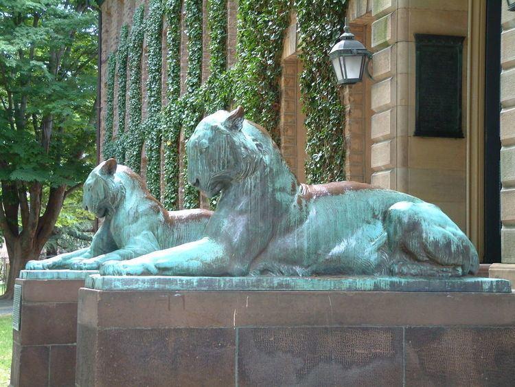 Princeton Law School Acceptance Rate
