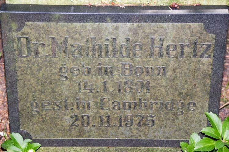Mathilde Carmen Hertz Dr Mathilde Carmen Hertz 1891 1975 Find A Grave Memorial
