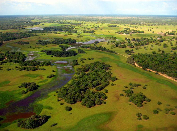 Mato Grosso Beautiful Landscapes of Mato Grosso
