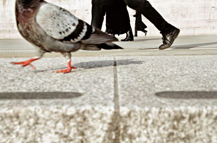 Matt Stuart (photographer) COLOUR MATT STUART PHOTOGRAPHER SHOOTS PEOPLE MATT STUART