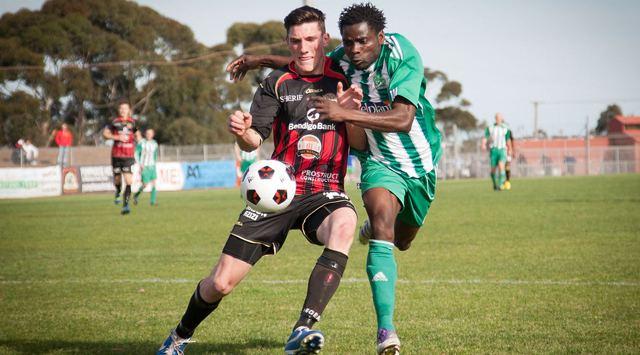 Matthew Millar (footballer) Matthew Millar named Rising Star FFV NPL SportsTG